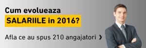 Raport Hipo Piata fortei de Munca 2016