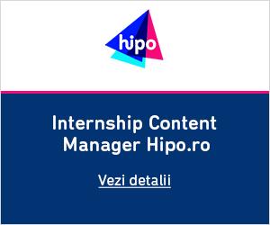Internship Hipo 2017